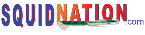 Logo squidnation