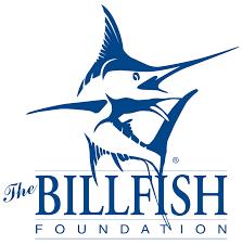 Logo tbf2
