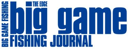Logo biggamejournal